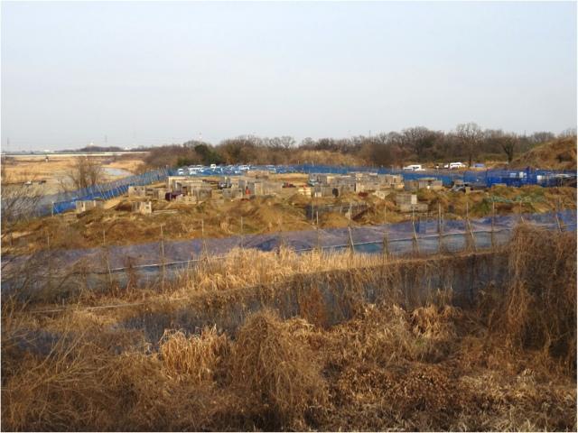 デザートストーム川越