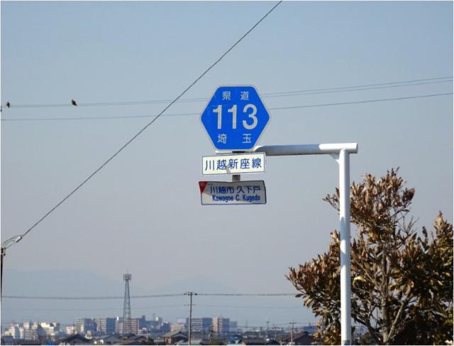 県道113号