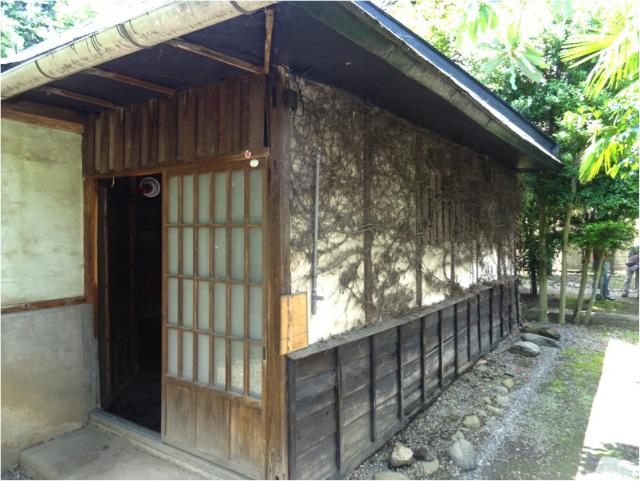 nagashima15