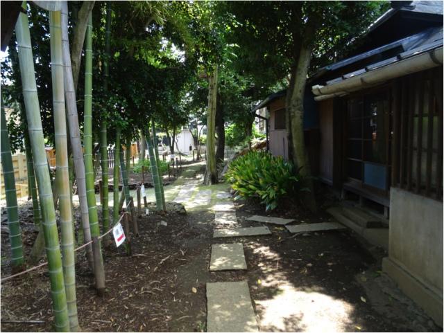 nagashima17