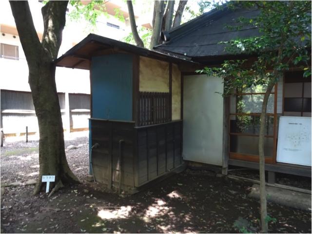 nagashima31