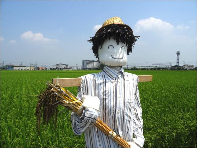 うれしい収穫