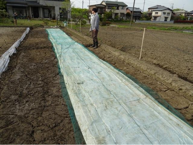 satoyama55