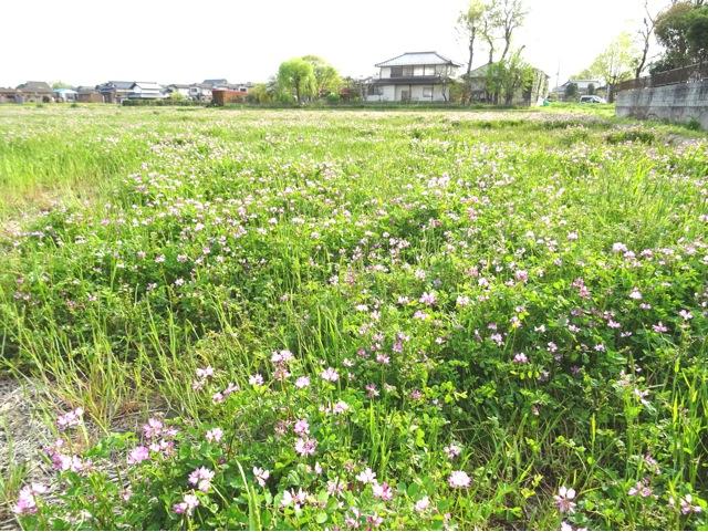 satoyama58