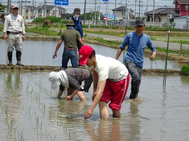 satoyama35