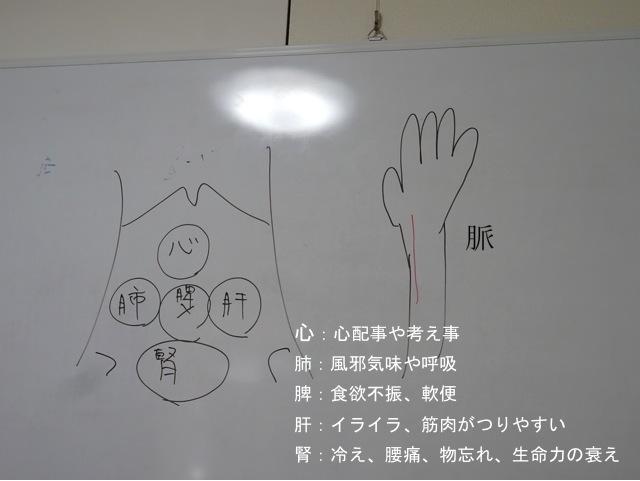 shinkyu06