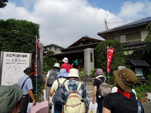 hichifukujin17