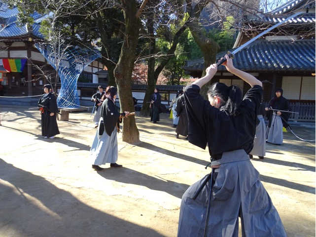 koyoisai03