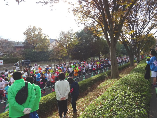 marathon23