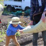 大人も子供もみんなでワイワイ種まきと苗床作り〜かわごえ里山イニシアチブ〜