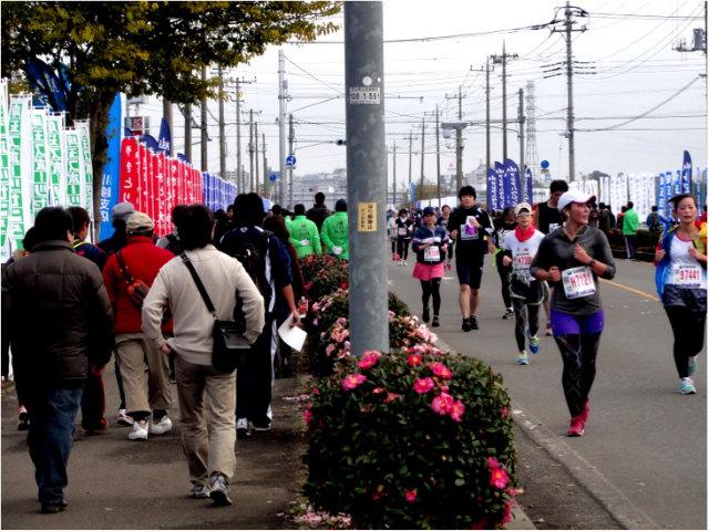 marathon26