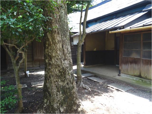 nagashima10