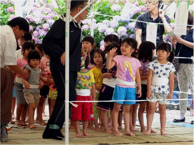 こども相撲幼児女子