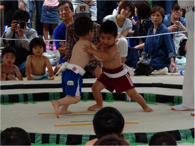 こども相撲幼児男子