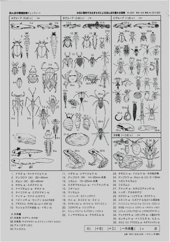 田んぼの環境診断シート