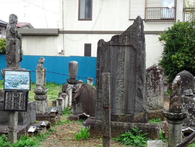 sakura48