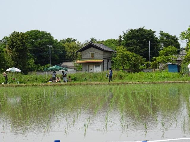 satoyama38