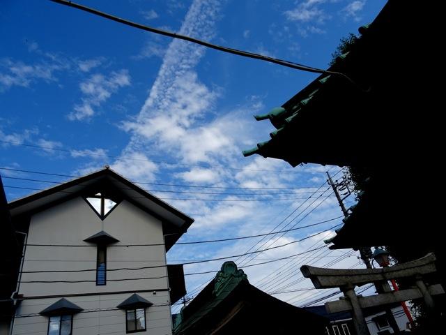 koyoi33