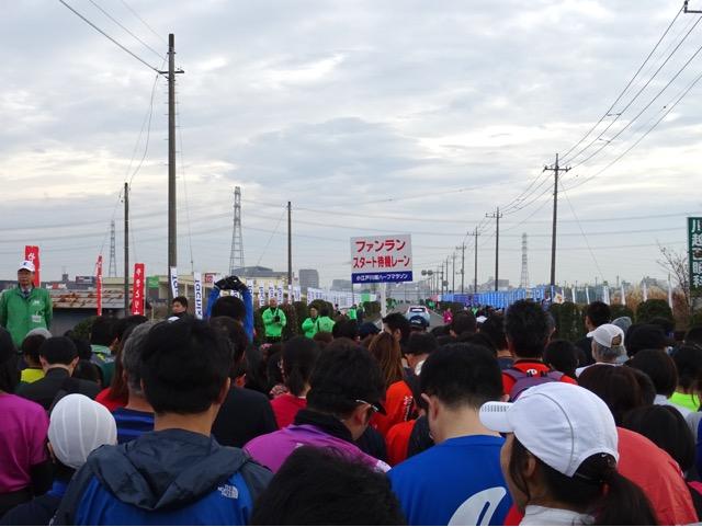 marathon29