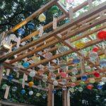 川越の夏の風物詩、縁むすび風鈴が2年ぶりに帰ってきた!